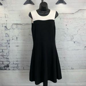Vince Camuto Black/White Block Sweater Dress 381